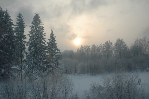 Snowy country-side near Perm