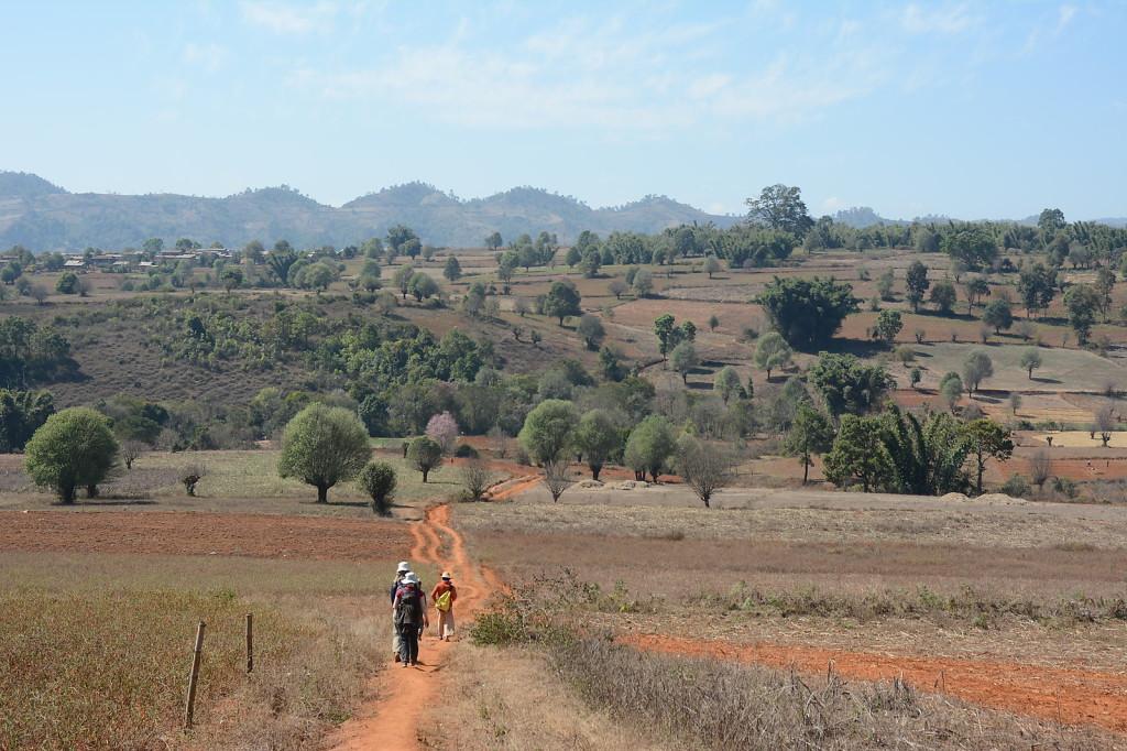 Myanmar's hilly terrain is very fertile...