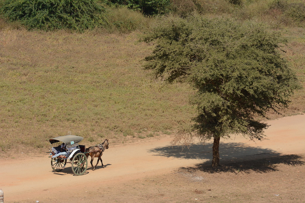 Common mode of transport in Bagan: horse carriage