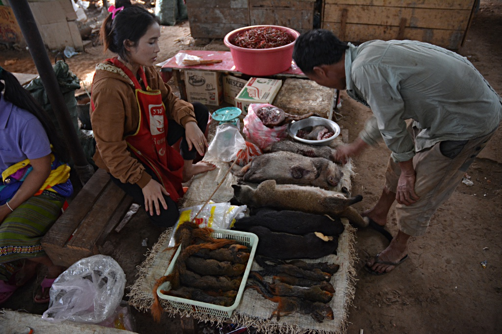 Selling all sorts of animals at Thatheng market