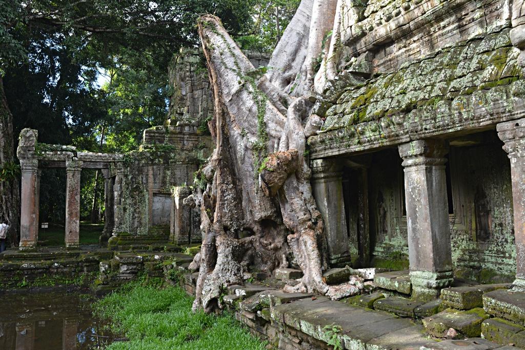 The mystic ruins of Preah Khan