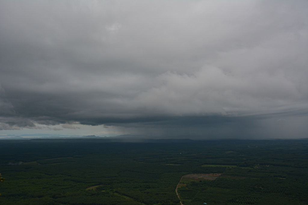 Heavy rain passing over palm plantations east of Krabi
